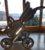 Teutonia Kombi-Kinderwagen Mistral P - Bild2