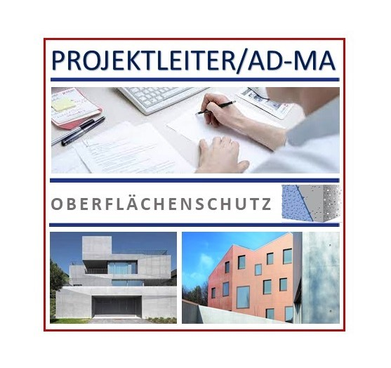 Projektleiter-Oberflächenschutz-TI